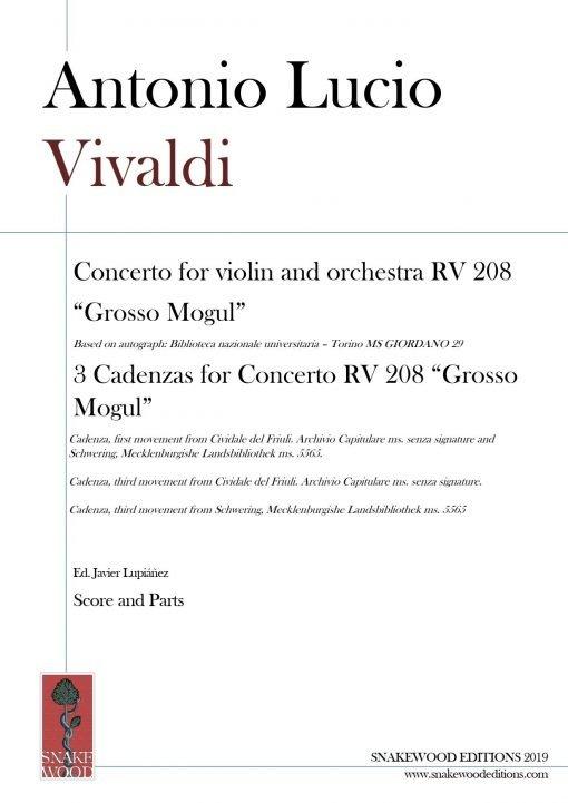 RV 208 Concerto and cadenzas